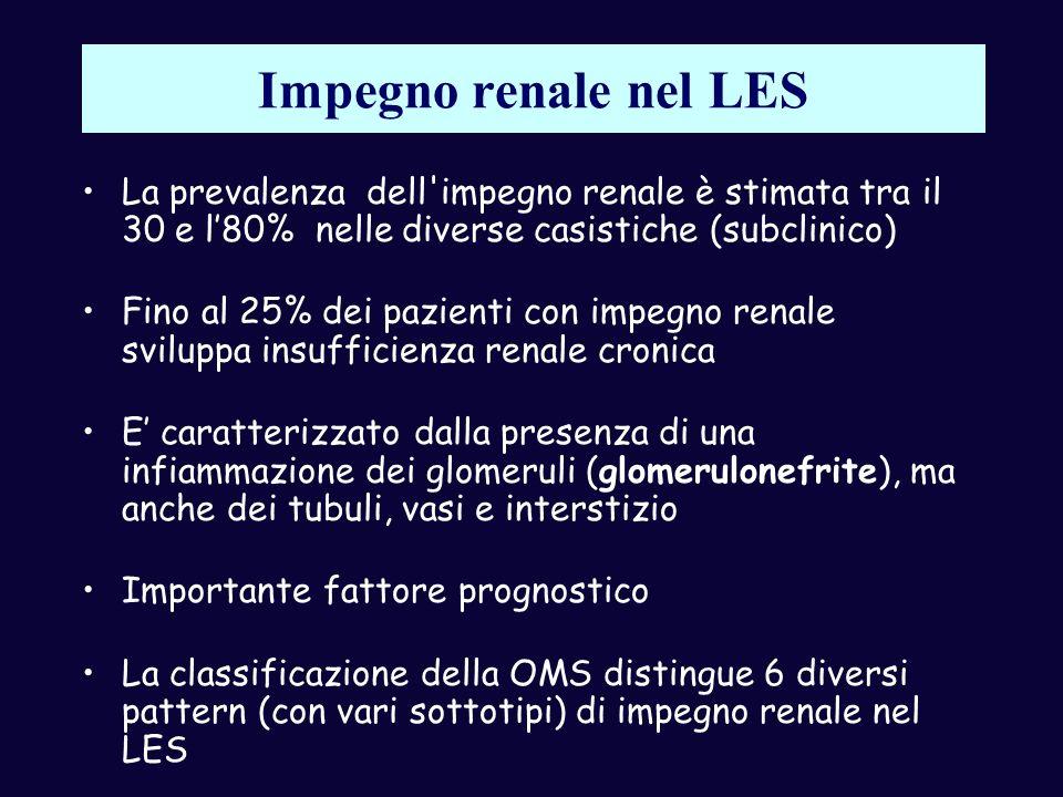 Impegno renale nel LES La prevalenza dell'impegno renale è stimata tra il 30 e l80% nelle diverse casistiche (subclinico) Fino al 25% dei pazienti con