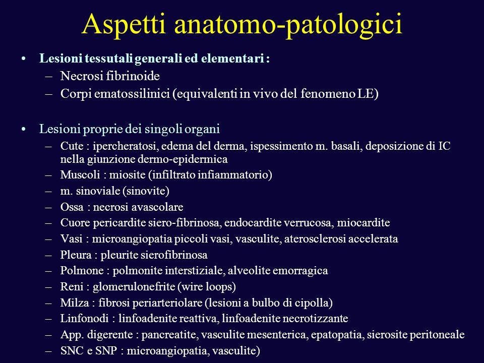 Aspetti anatomo-patologici Lesioni tessutali generali ed elementari : –Necrosi fibrinoide –Corpi ematossilinici (equivalenti in vivo del fenomeno LE)