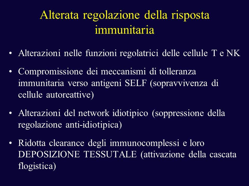 Alterata regolazione della risposta immunitaria Alterazioni nelle funzioni regolatrici delle cellule T e NK Compromissione dei meccanismi di tolleranz