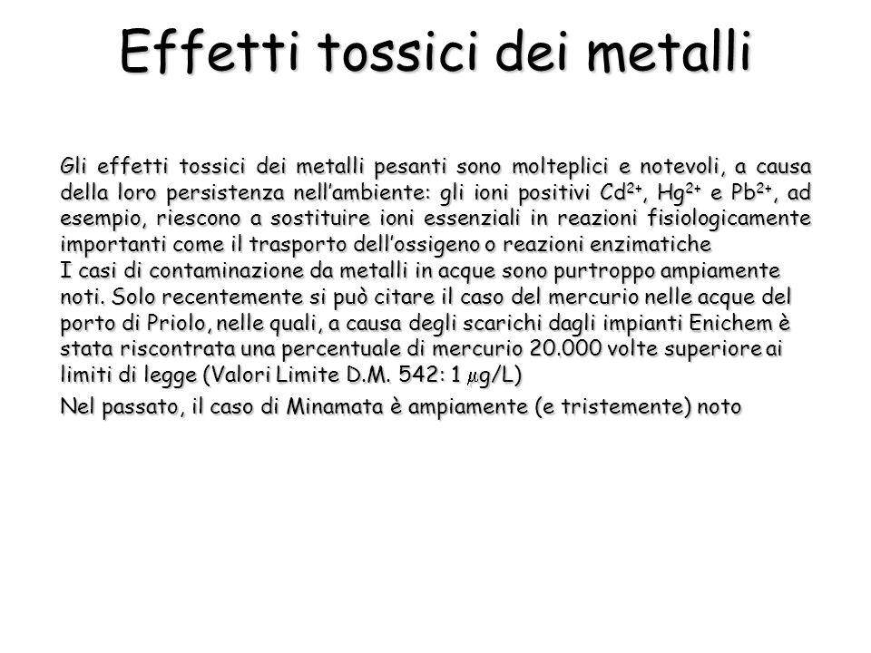 Effetti tossici dei metalli Gli effetti tossici dei metalli pesanti sono molteplici e notevoli, a causa della loro persistenza nellambiente: gli ioni