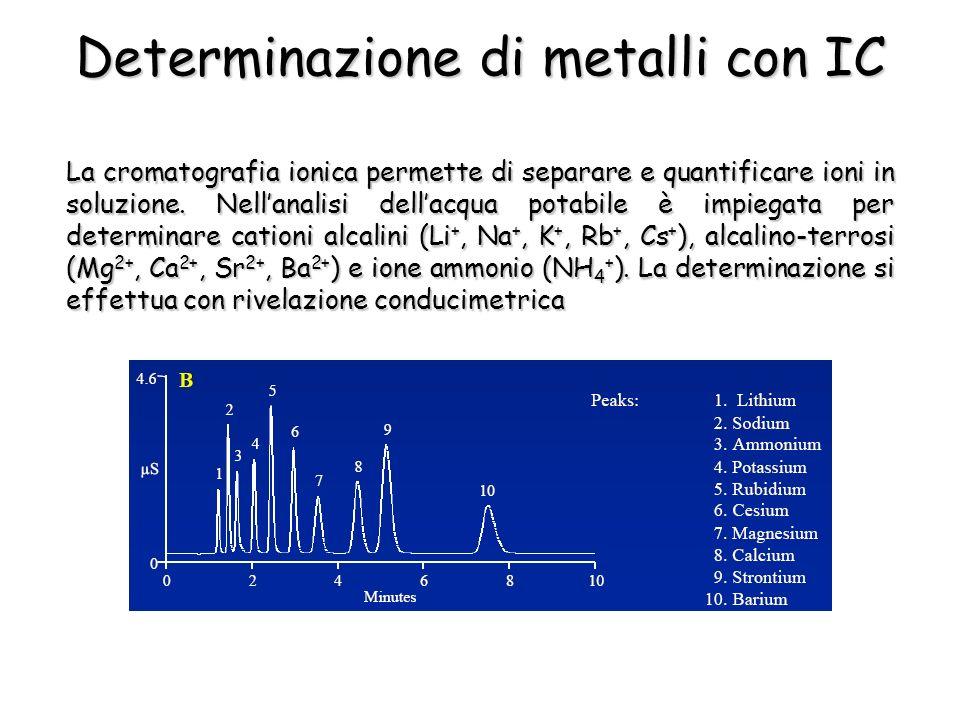 La cromatografia ionica permette di separare e quantificare ioni in soluzione. Nellanalisi dellacqua potabile è impiegata per determinare cationi alca
