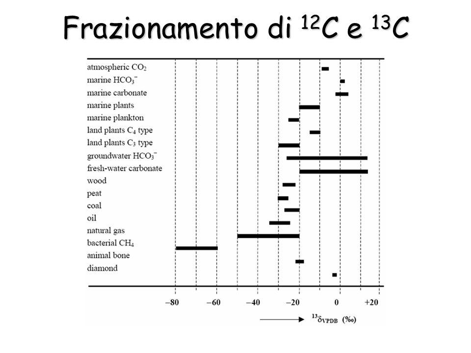 Frazionamento di 12 C e 13 C