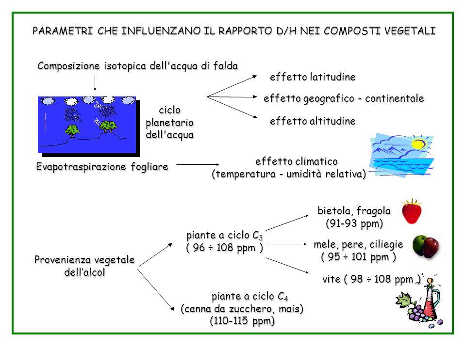 Parametri D/H nei vegetali PARAMETRI CHE INFLUENZANO IL RAPPORTO D/H NEI COMPOSTI VEGETALI Composizione isotopica dell'acqua di falda effetto latitudi