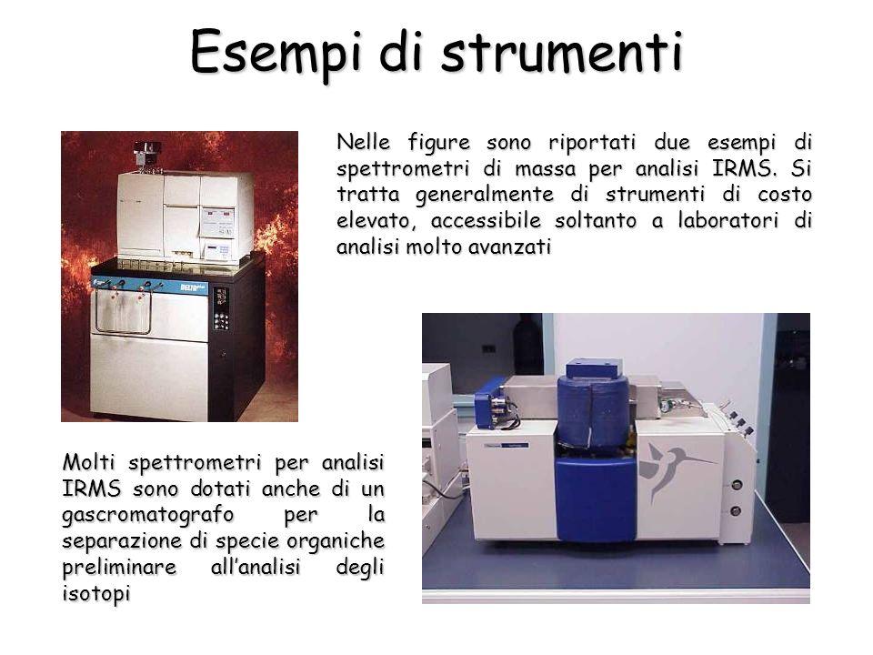 Nelle figure sono riportati due esempi di spettrometri di massa per analisi IRMS. Si tratta generalmente di strumenti di costo elevato, accessibile so