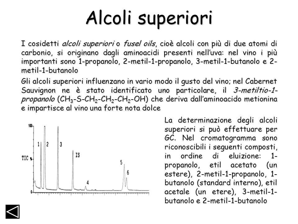 Alcoli superiori I cosidetti alcoli superiori o fusel oils, cioè alcoli con più di due atomi di carbonio, si originano dagli aminoacidi presenti nellu