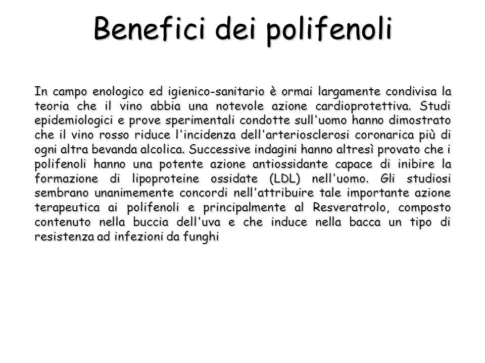 Benefici dei polifenoli In campo enologico ed igienico-sanitario è ormai largamente condivisa la teoria che il vino abbia una notevole azione cardiopr