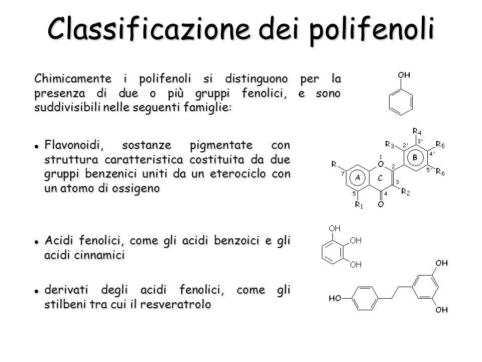 Chimicamente i polifenoli si distinguono per la presenza di due o più gruppi fenolici, e sono suddivisibili nelle seguenti famiglie: Classificazione d