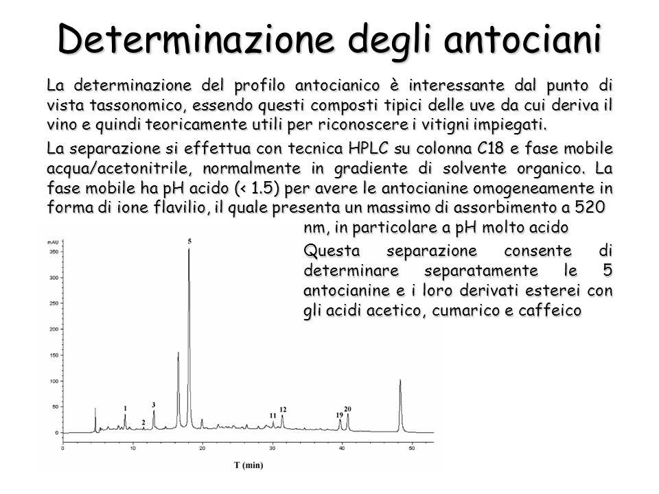 Determinazione degli antociani La determinazione del profilo antocianico è interessante dal punto di vista tassonomico, essendo questi composti tipici