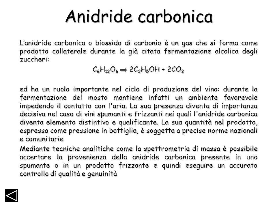 Anidride carbonica Lanidride carbonica o biossido di carbonio è un gas che si forma come prodotto collaterale durante la già citata fermentazione alco