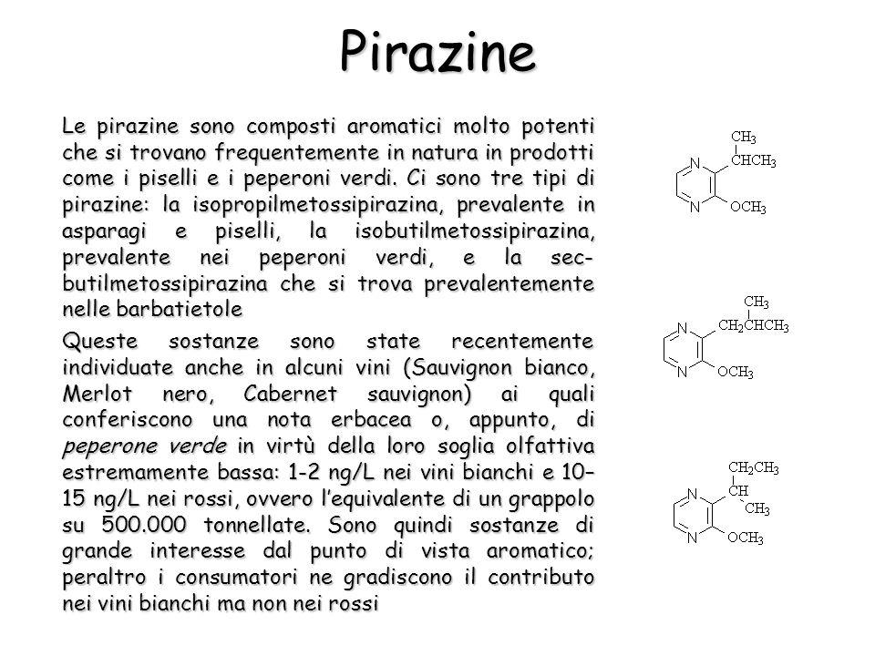 Pirazine Le pirazine sono composti aromatici molto potenti che si trovano frequentemente in natura in prodotti come i piselli e i peperoni verdi. Ci s