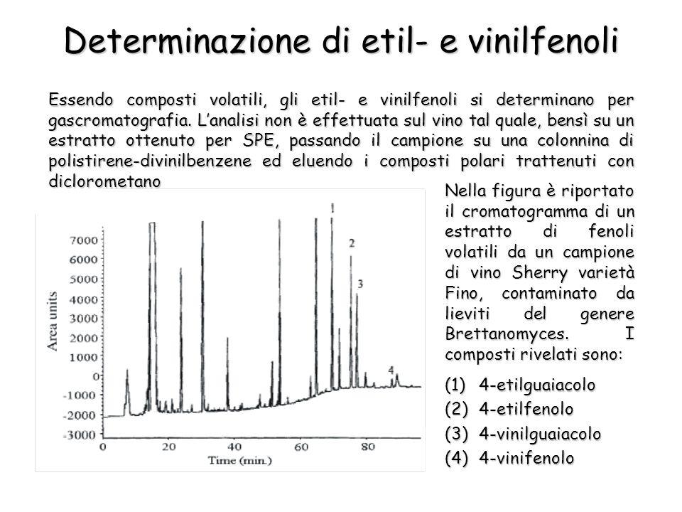 Determinazione di etil- e vinilfenoli Essendo composti volatili, gli etil- e vinilfenoli si determinano per gascromatografia. Lanalisi non è effettuat
