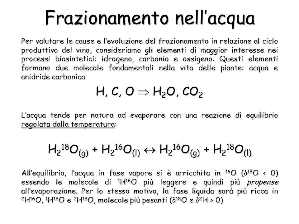 Frazionamento nellacqua Per valutare le cause e levoluzione del frazionamento in relazione al ciclo produttivo del vino, consideriamo gli elementi di