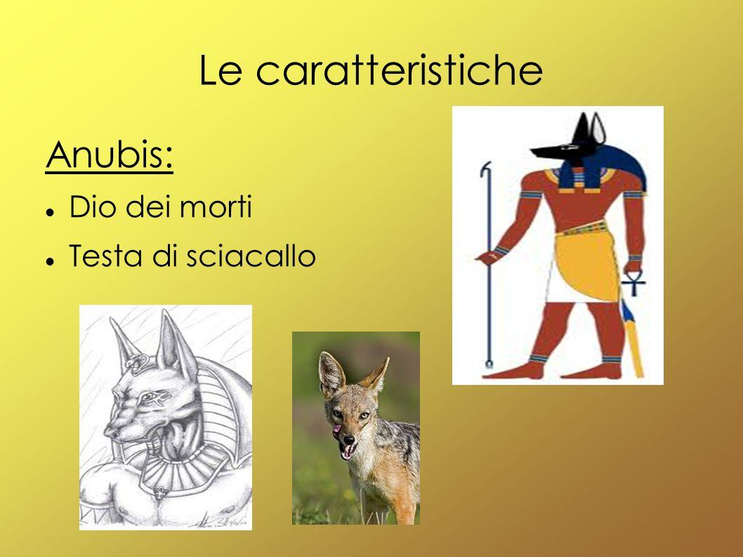 Le caratteristiche Anubis: Dio dei morti Testa di sciacallo