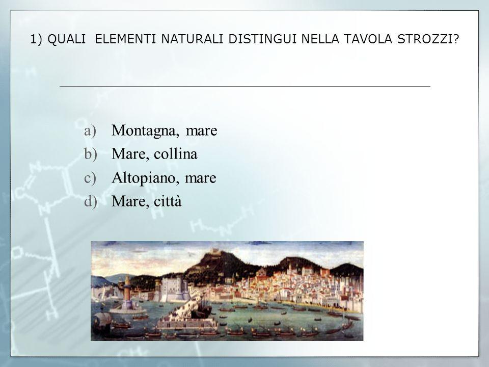 1) QUALI ELEMENTI NATURALI DISTINGUI NELLA TAVOLA STROZZI? a)Montagna, mare b)Mare, collina c)Altopiano, mare d)Mare, città