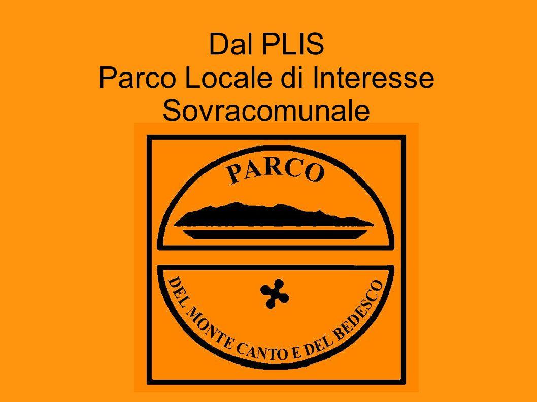 Dal PLIS Parco Locale di Interesse Sovracomunale