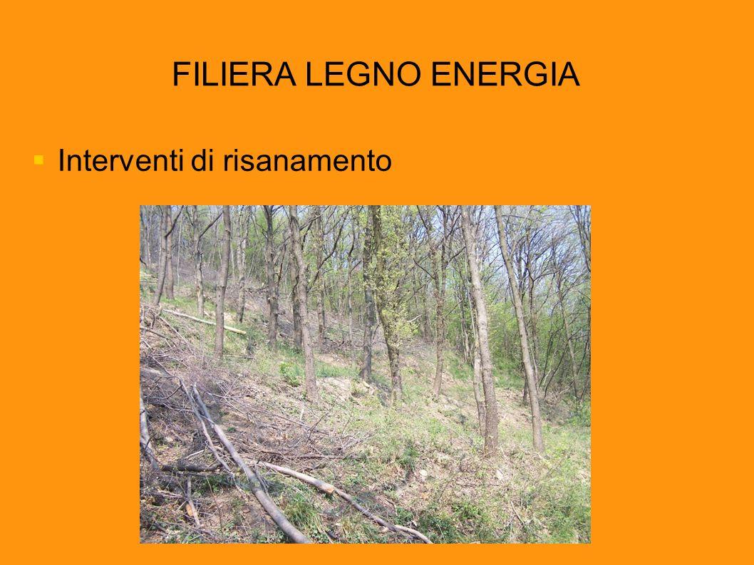 FILIERA LEGNO ENERGIA Interventi di risanamento