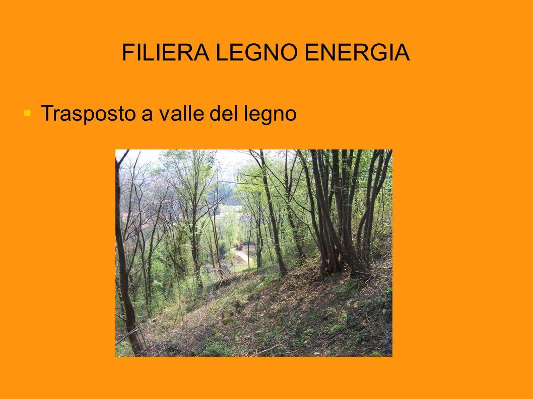 FILIERA LEGNO ENERGIA Trasposto a valle del legno