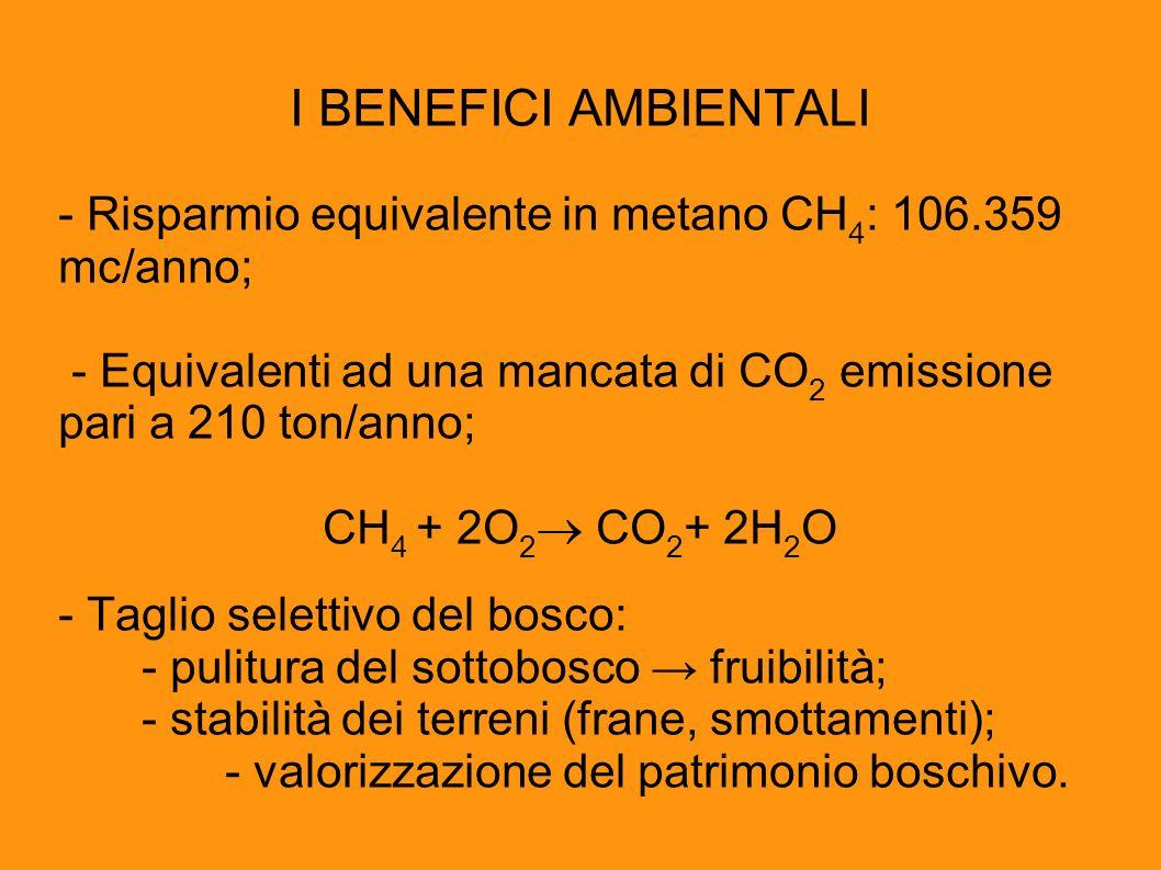 I BENEFICI AMBIENTALI - Risparmio equivalente in metano CH 4 : 106.359 mc/anno; - Equivalenti ad una mancata di CO 2 emissione pari a 210 ton/anno; CH