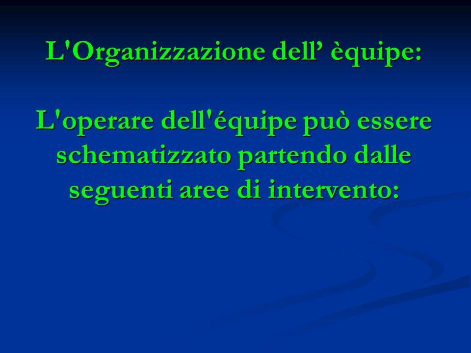 L'Organizzazione dell èquipe: L'operare dell'équipe può essere schematizzato partendo dalle seguenti aree di intervento: