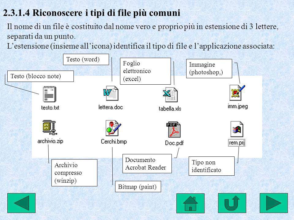 2.3.1.4 Riconoscere i tipi di file più comuni Il nome di un file è costituito dal nome vero e proprio più in estensione di 3 lettere, separati da un p