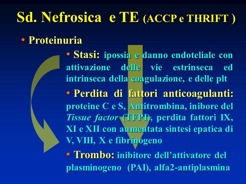 Sd. Nefrosica e TE (ACCP e THRIFT ) Proteinuria Proteinuria Perdita di fattori anticoagulanti: proteine C e S, Antitrombina, inibore del Tissue factor