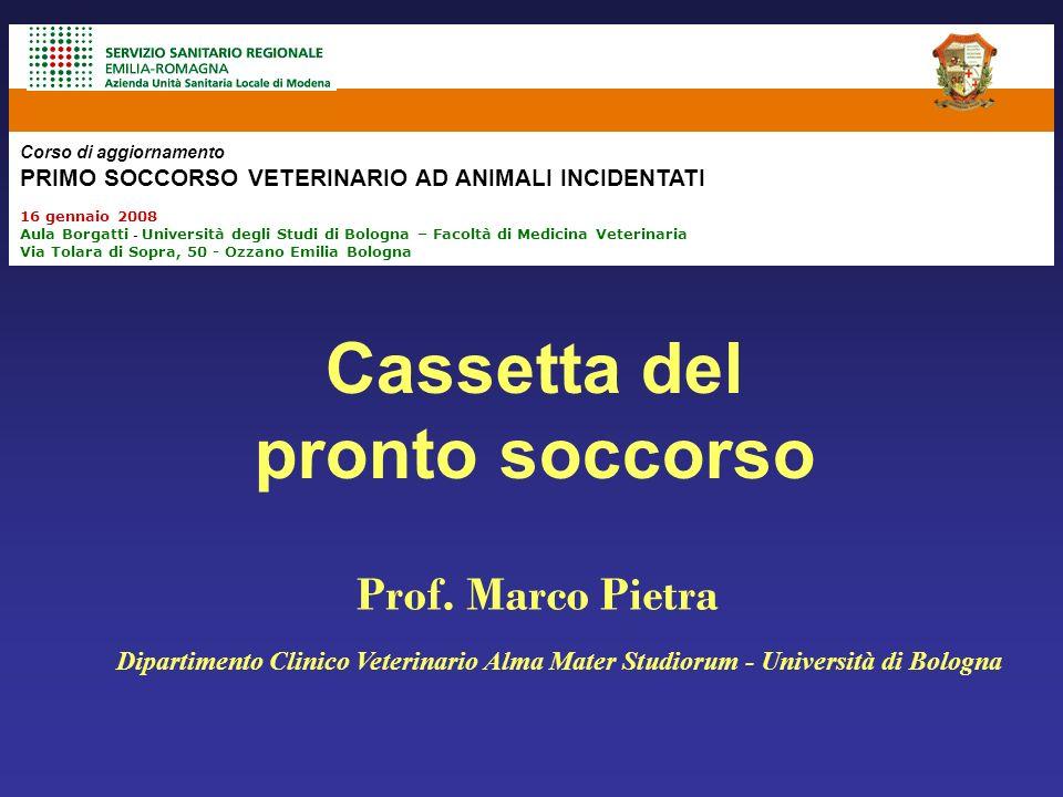 Rianimazione respiratoria Rianimazione cardiocircolatoria Terapia shock Emostasi, immobilizzazione paziente, sedazione Bologna, 16 Gennaio 2008