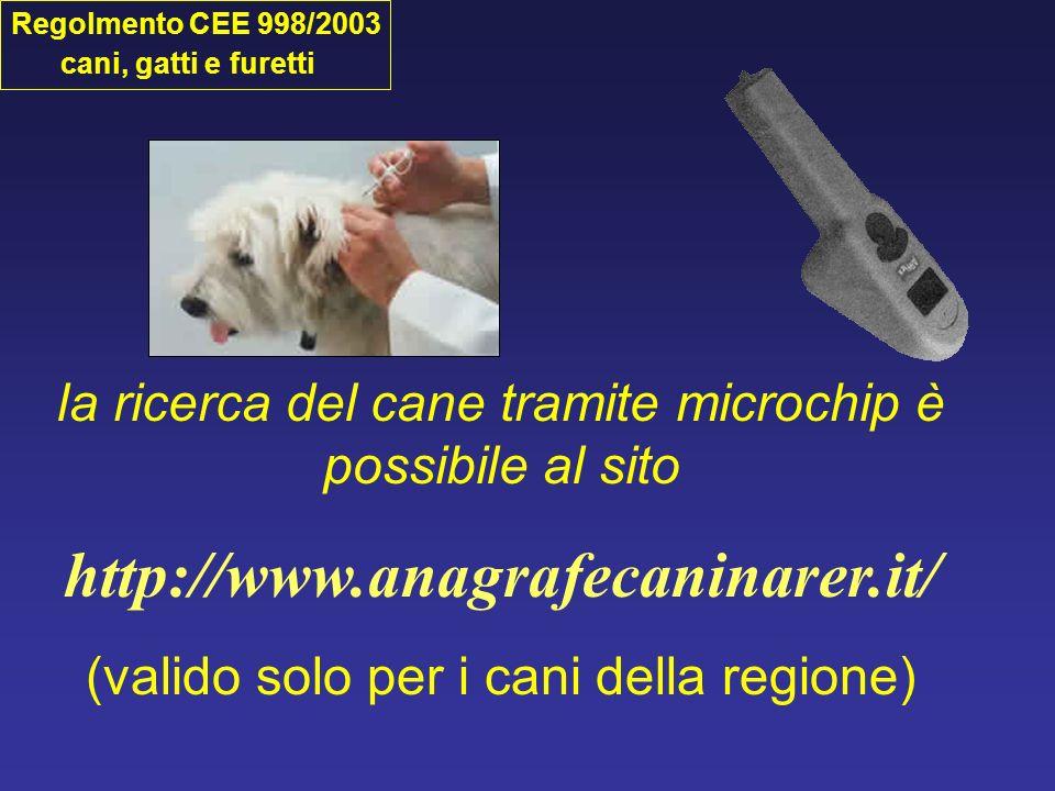 Rianimazione cardiopolmonare fino a 7 kg decubito laterale sopra i 7 kg decubito dorso ventrale Bologna, 16 Gennaio 2008