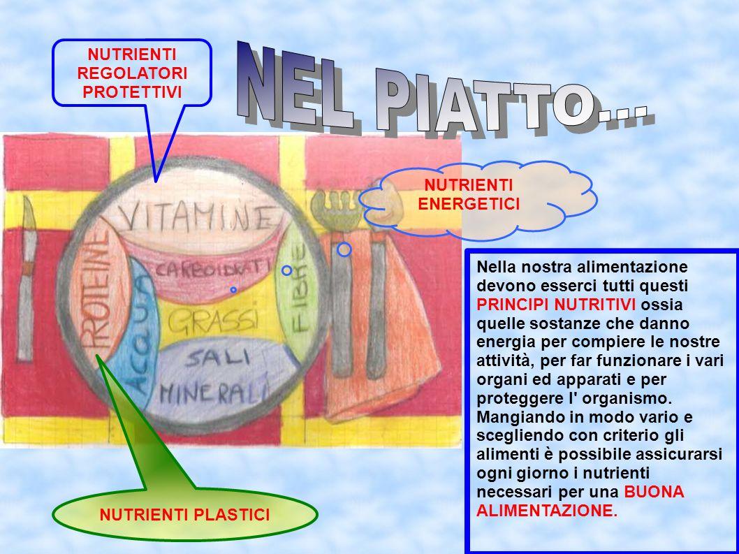 NUTRIENTI PLASTICI NUTRIENTI REGOLATORI PROTETTIVI Nella nostra alimentazione devono esserci tutti questi PRINCIPI NUTRITIVI ossia quelle sostanze che
