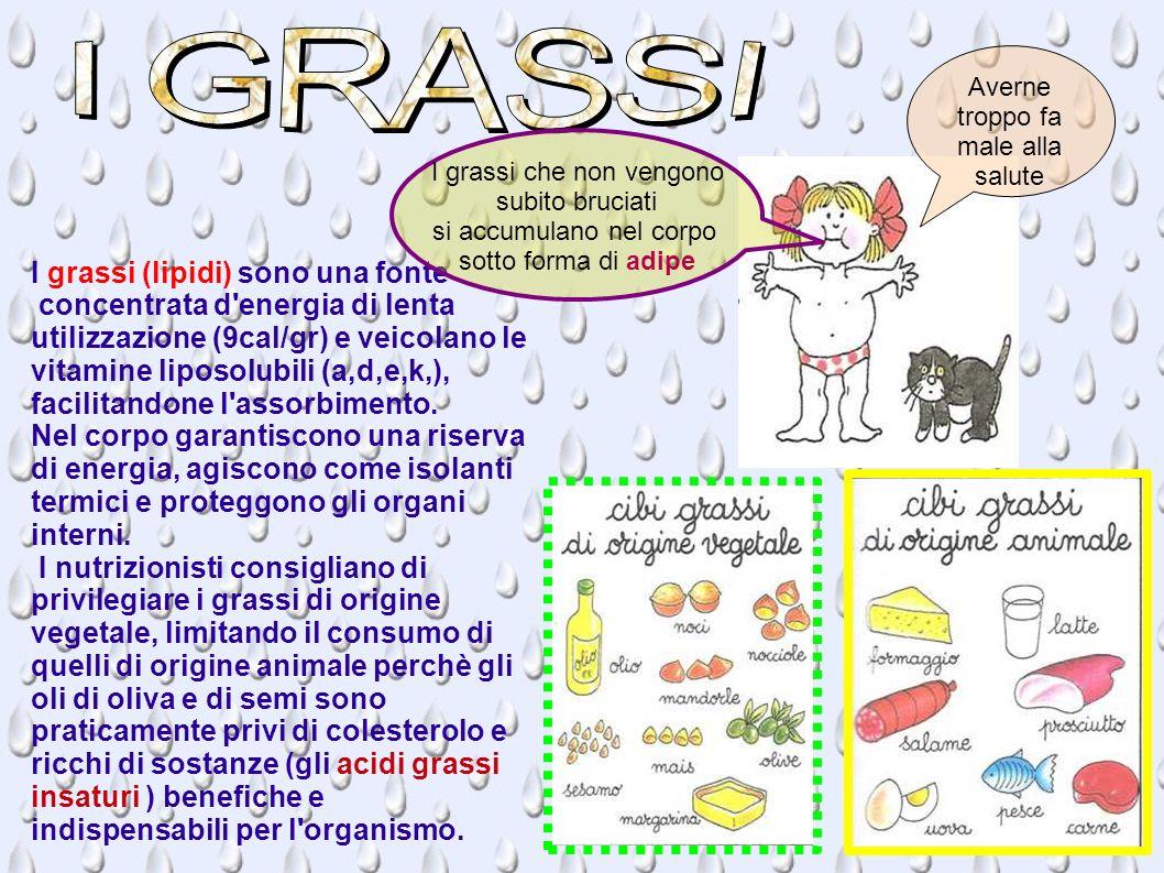 I grassi (lipidi) sono una fonte concentrata d'energia di lenta utilizzazione (9cal/gr) e veicolano le vitamine liposolubili (a,d,e,k,), facilitandone