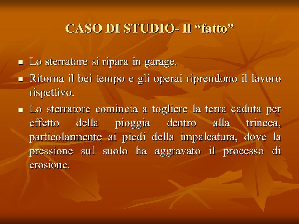 CASO DI STUDIO- Il fatto Disturbato dalla scala di accesso all'impalcatura, lo sterratore la toglie e la depone a terra. Inizia a cadere una forte pio