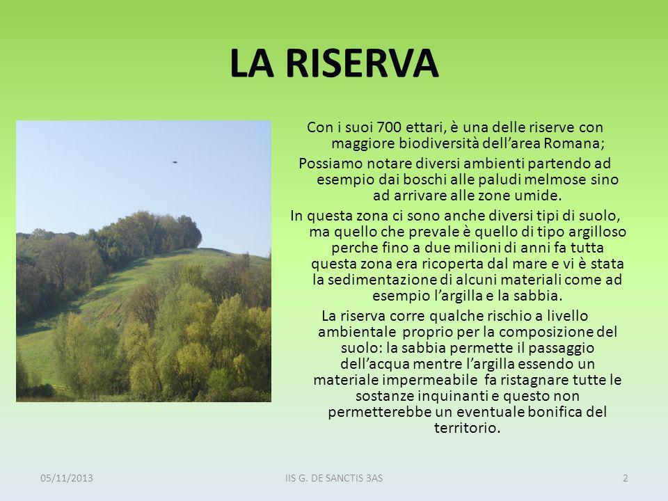 LA RISERVA Con i suoi 700 ettari, è una delle riserve con maggiore biodiversità dellarea Romana; Possiamo notare diversi ambienti partendo ad esempio