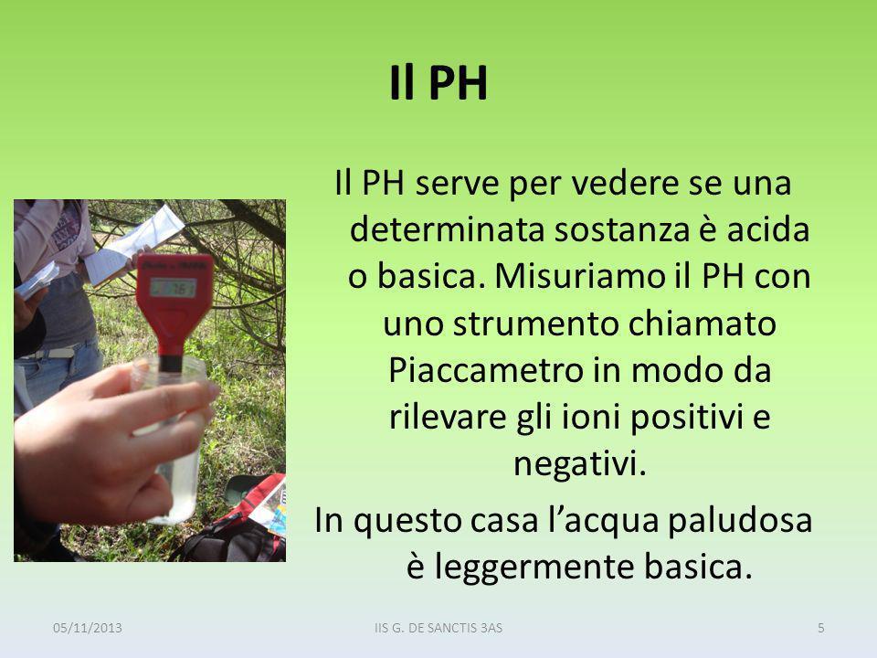 Il PH Il PH serve per vedere se una determinata sostanza è acida o basica. Misuriamo il PH con uno strumento chiamato Piaccametro in modo da rilevare