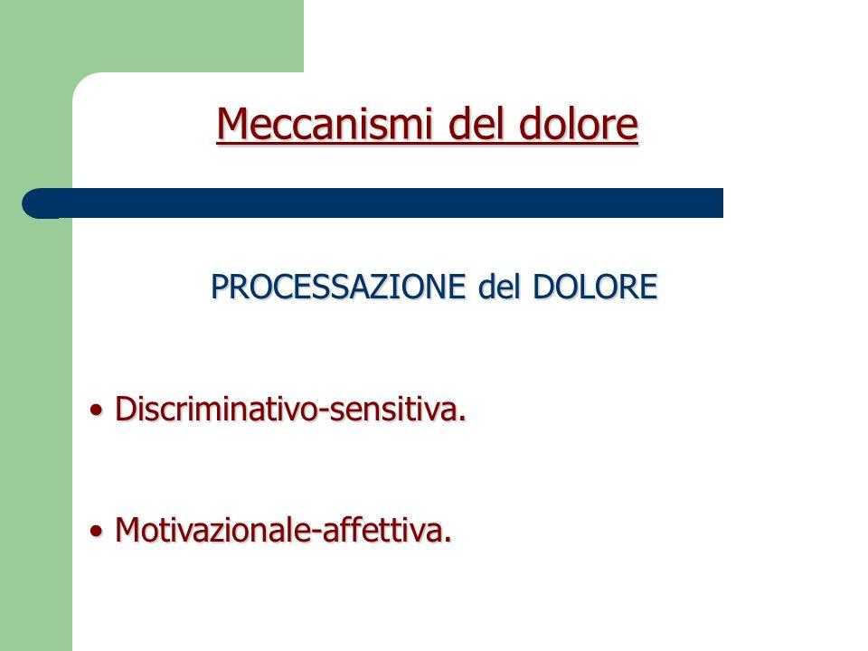 Meccanismi del dolore Discriminativo-sensitiva (meccanismi subcorticali e corticali) Intensità, durata, sede, qualità dello stimolo.