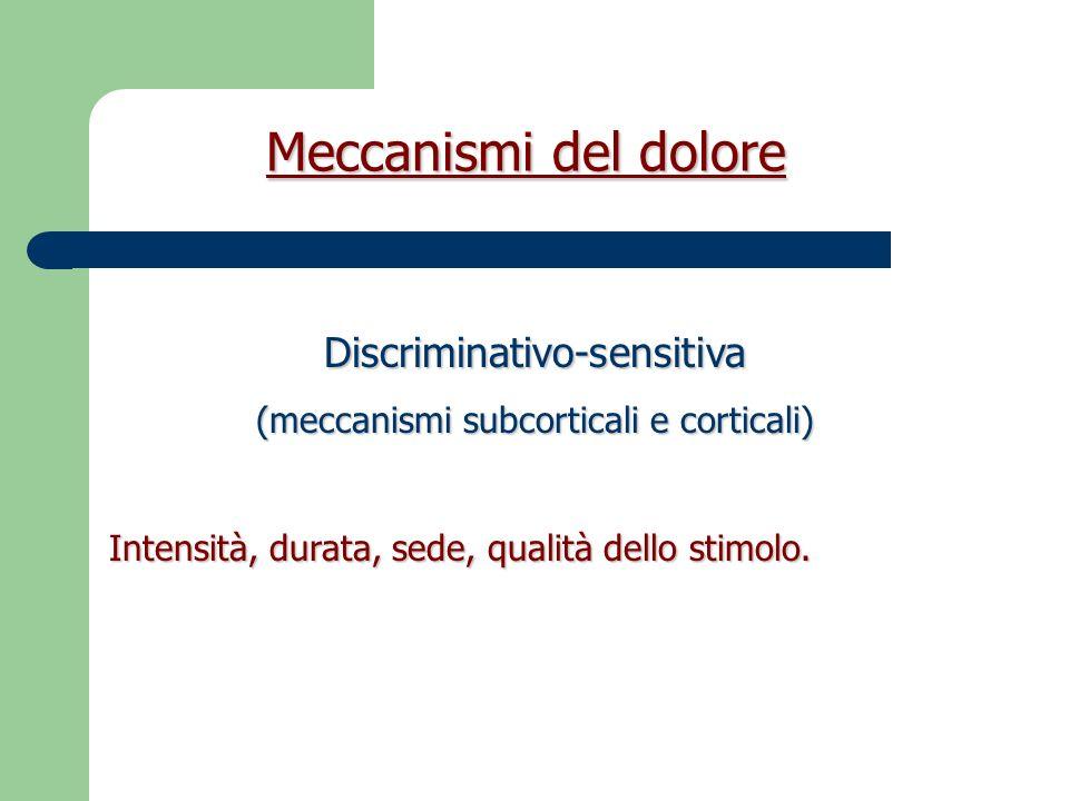 Meccanismi del dolore Motivazionale-affettiva (Sistema limbico, SNA) Percezione della gravità dello stimolo.