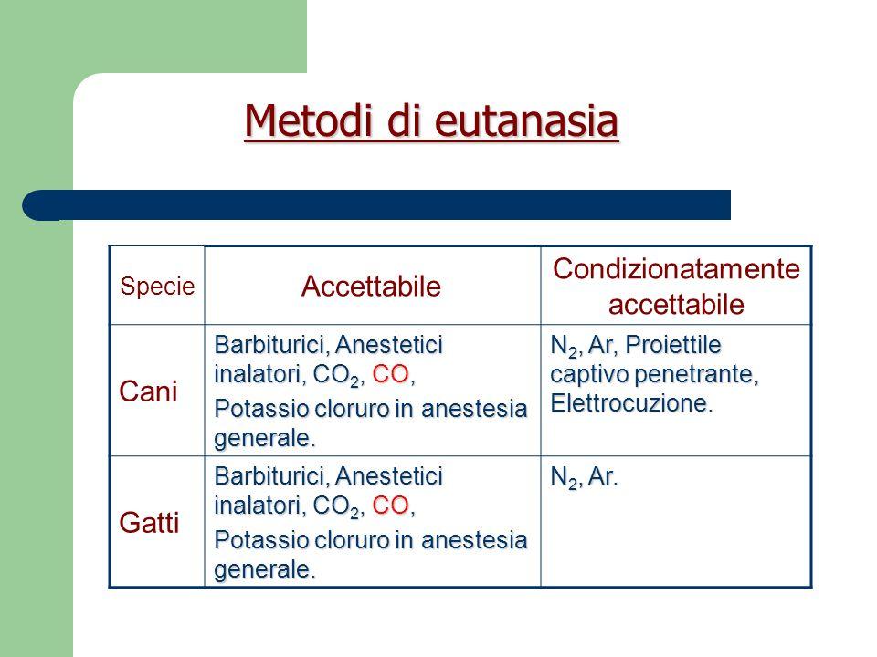 Meccanismo dazione agenti eutanasici 1.Ipossia, diretta o indiretta.