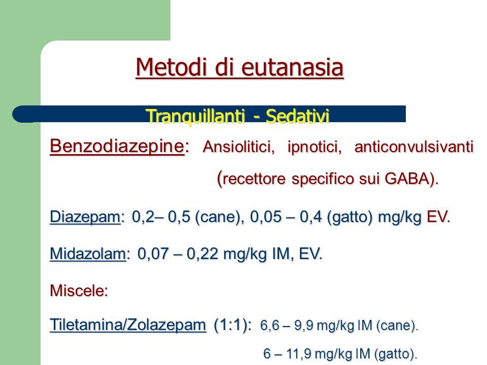 Alpha 2 agonisti: analgesia, sedazione, miorilassamento.