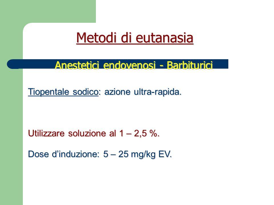 Pentobarbitale: struttura simile al tiopentale.Anestetico generale, anticonvulsivante (NO Italia).