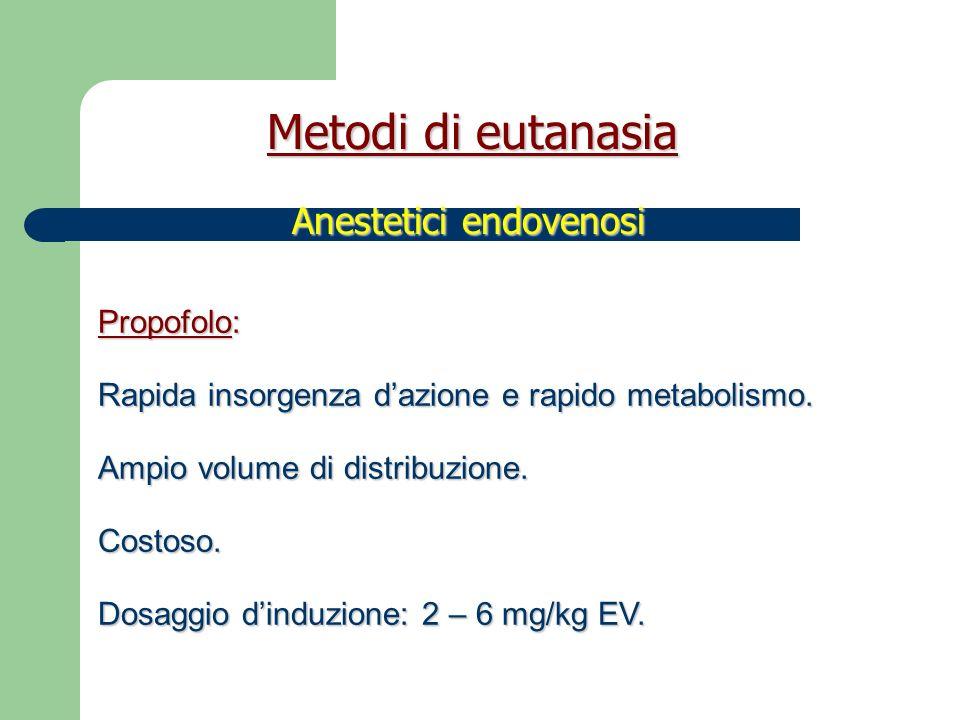 Tanax ® : embutramide, mebenzonio ioduro, tetracaina.
