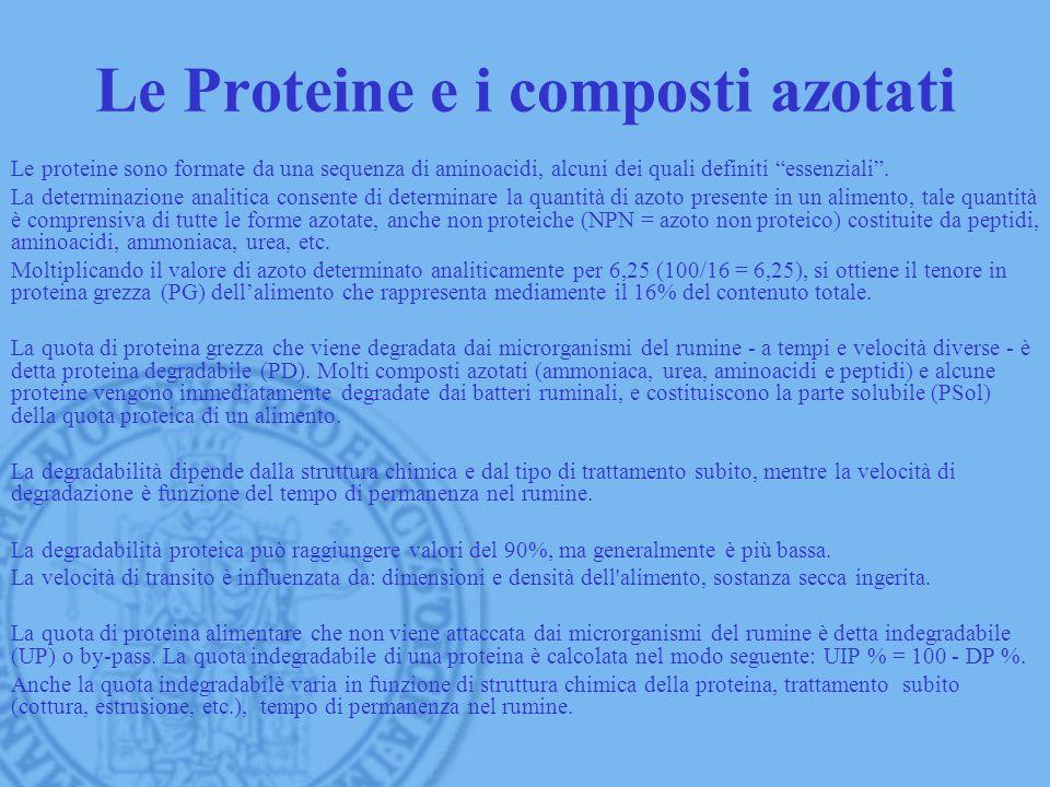 Le Proteine e i composti azotati Le proteine sono formate da una sequenza di aminoacidi, alcuni dei quali definiti essenziali. La determinazione anali