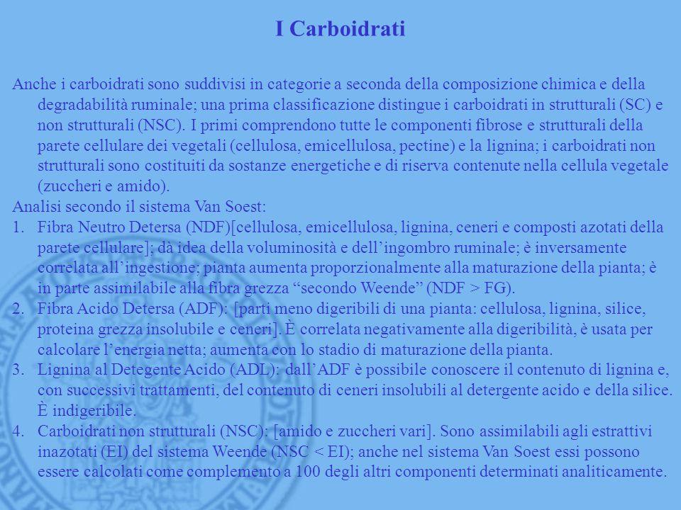 I Carboidrati Anche i carboidrati sono suddivisi in categorie a seconda della composizione chimica e della degradabilità ruminale; una prima classific