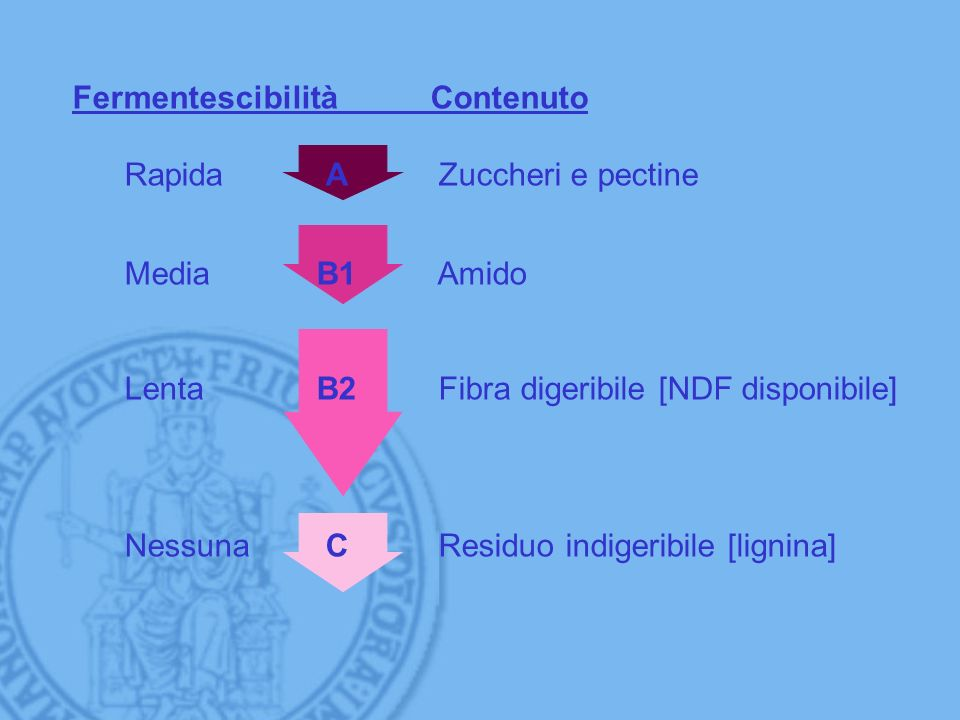 Fermentescibilità Contenuto Rapida A Zuccheri e pectine MediaB1 Amido LentaB2 Fibra digeribile [NDF disponibile] Nessuna C Residuo indigeribile [ligni