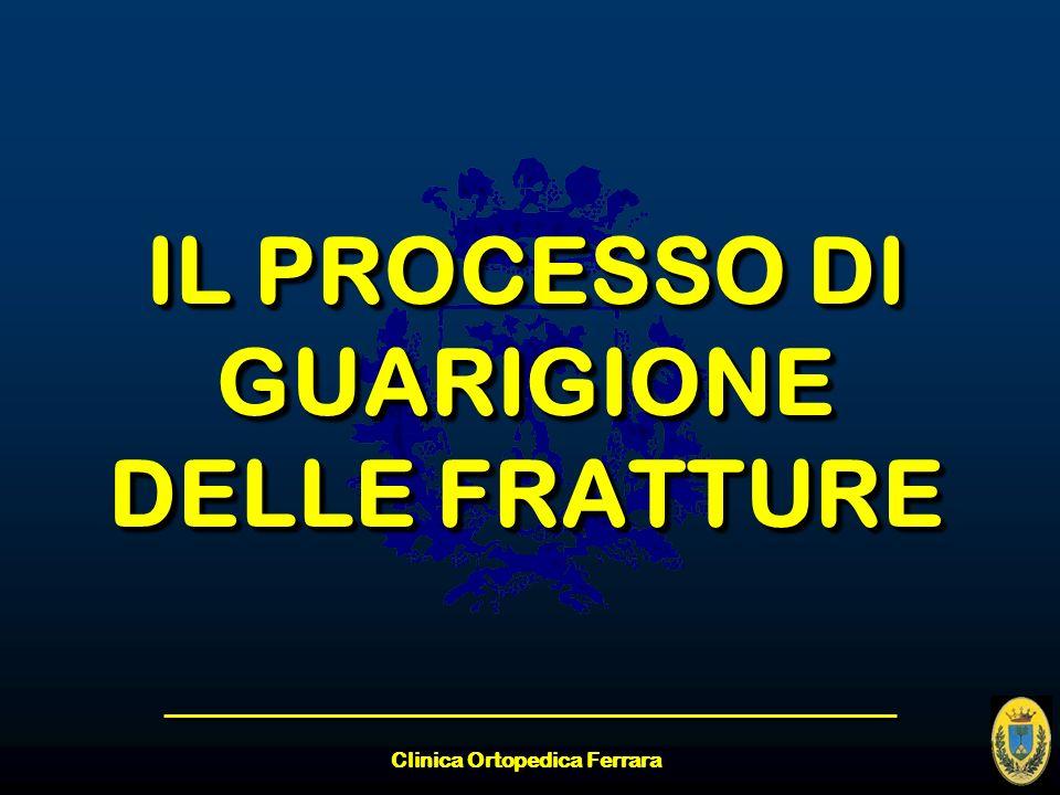 Clinica Ortopedica Ferrara IL PROCESSO DI GUARIGIONE DELLE FRATTURE