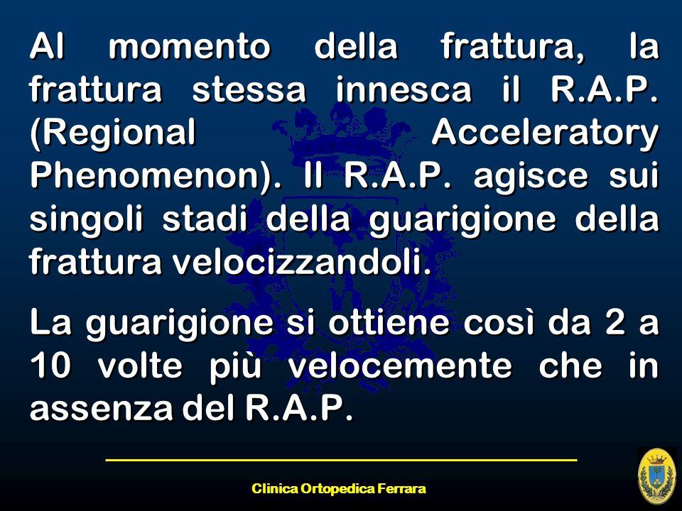 Clinica Ortopedica Ferrara Al momento della frattura, la frattura stessa innesca il R.A.P. (Regional Acceleratory Phenomenon). Il R.A.P. agisce sui si