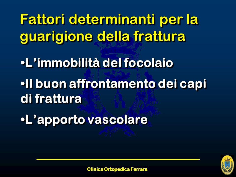 Clinica Ortopedica Ferrara Fattori determinanti per la guarigione della frattura Limmobilità del focolaioLimmobilità del focolaio Il buon affrontament