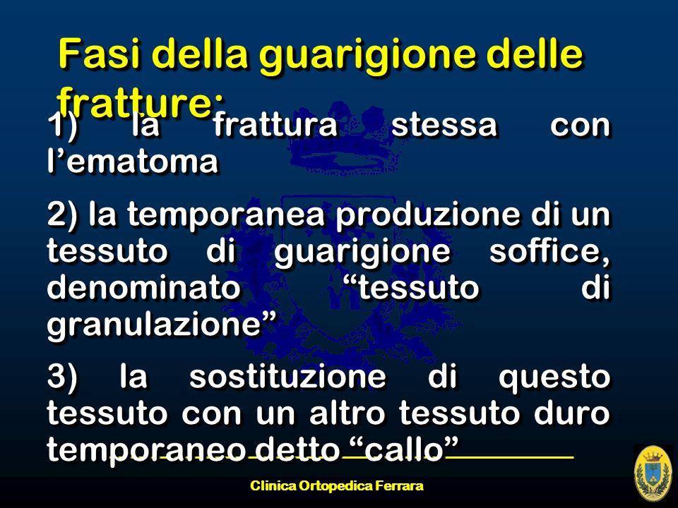 Clinica Ortopedica Ferrara Fasi della guarigione delle fratture: 1) la frattura stessa con lematoma 2) la temporanea produzione di un tessuto di guari