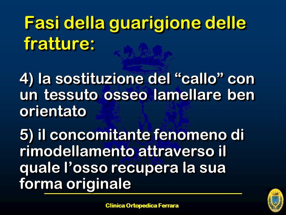 Clinica Ortopedica Ferrara Fasi della guarigione delle fratture: 4) la sostituzione del callo con un tessuto osseo lamellare ben orientato 5) il conco