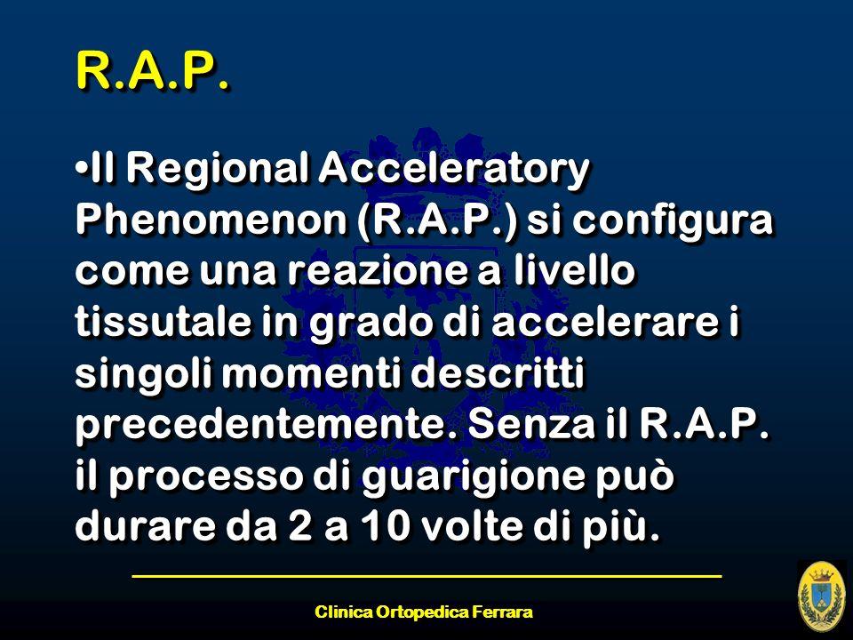 Clinica Ortopedica Ferrara R.A.P.R.A.P. Il Regional Acceleratory Phenomenon (R.A.P.) si configura come una reazione a livello tissutale in grado di ac