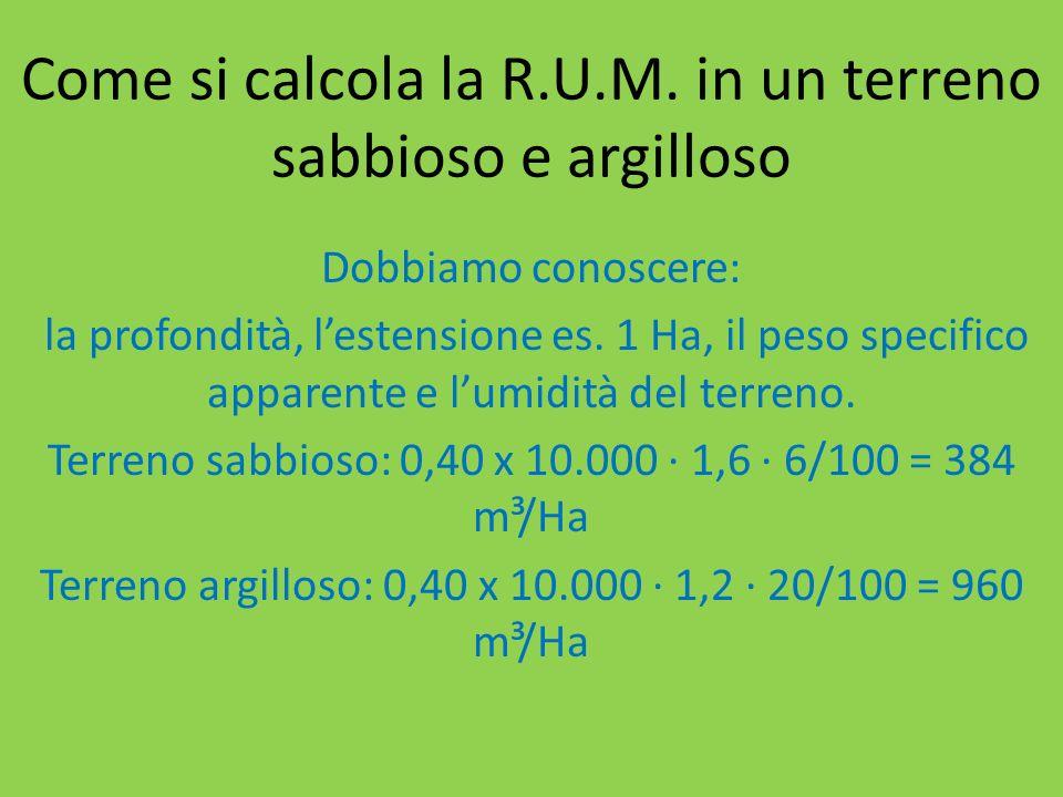 Come si calcola la R.U.M.