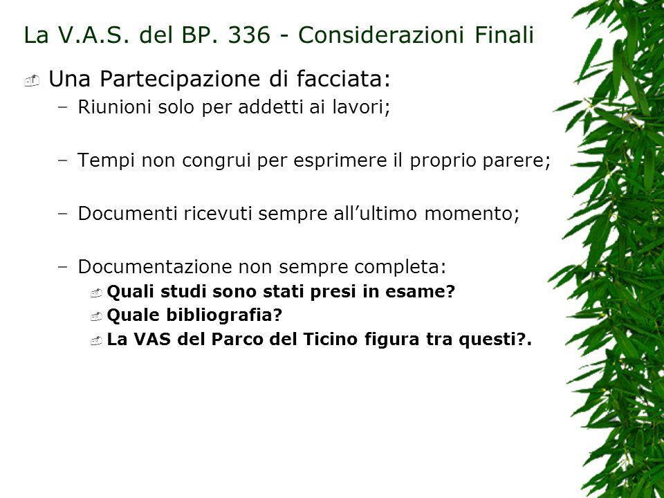 La V.A.S. del BP. 336 - Considerazioni Finali Una Partecipazione di facciata: –Riunioni solo per addetti ai lavori; –Tempi non congrui per esprimere i