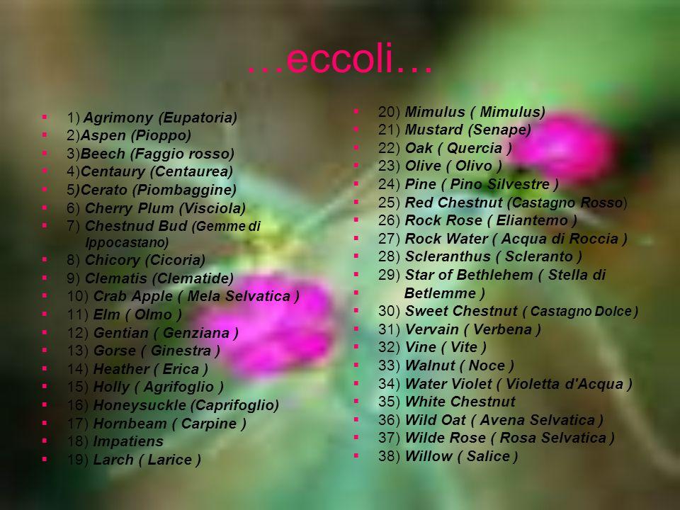 …eccoli… 1) Agrimony (Eupatoria) 2)Aspen (Pioppo) 3)Beech (Faggio rosso) 4)Centaury (Centaurea) 5)Cerato (Piombaggine) 6) Cherry Plum (Visciola) 7) Ch